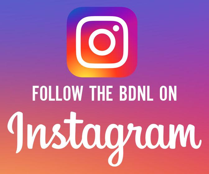 Bedford Netball Instagram Logo
